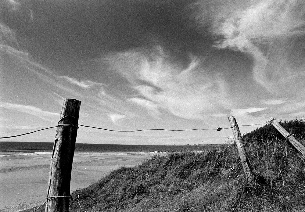 Kodak TRI-X400 / Nikon FM3A / Arsat 20mm