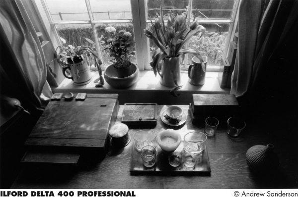 Delta 400 black and white film sample print