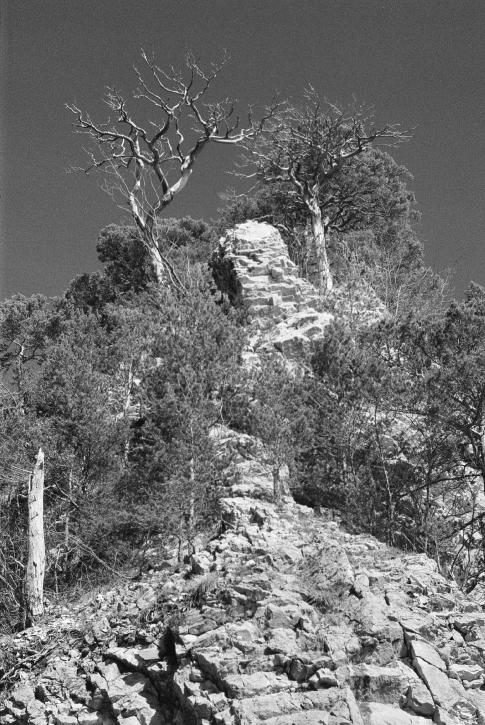 ROCK IN THE JURA MOUNTAINS By Michael Leupold, entered into Landscapes #fridayfavourites #filtered, yellow filter Developer - Other Film Format - 35mm Speed - 800 Country - Switzerland Camera & Lens - Canon AV-1, FD 50mm f1.8 Film Used - HP5 PLUS