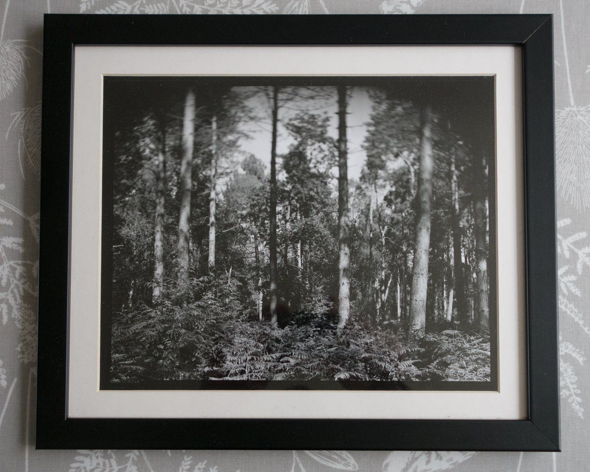 #ilfordphoto #fridayfavourites #darkroomprints