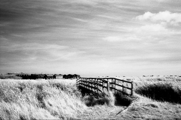 Black adn white images shot on ILFORD SFX200 film by Jason Avery