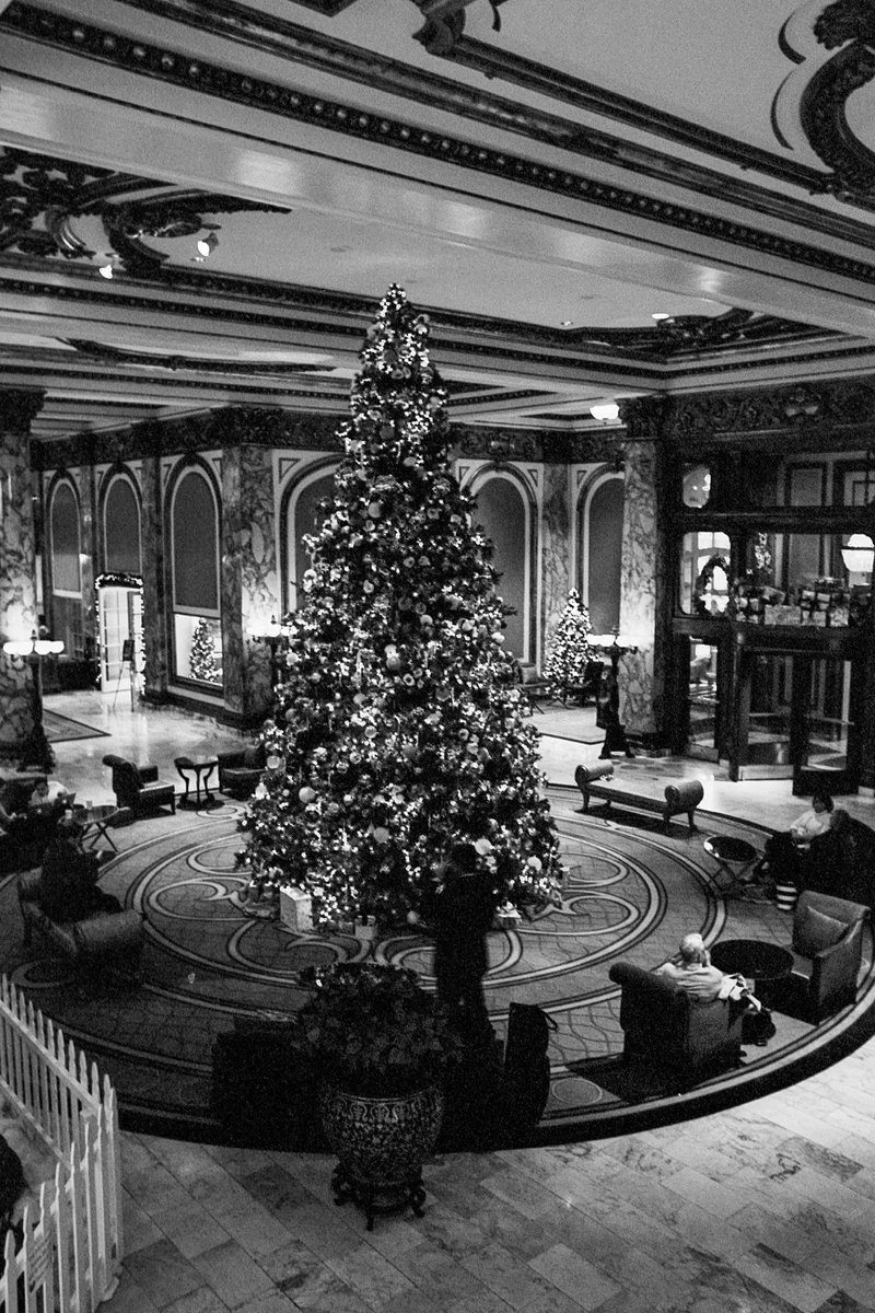 @adiw1202 The #ChristmasTree at the #Fairmont San Francisco - on #Ilford XP2 Super 400 with #Leica M6 and #Elmarit 28mm handheld. #believeinfilm #shootfilmbenice #Ilfordphoto #justadd