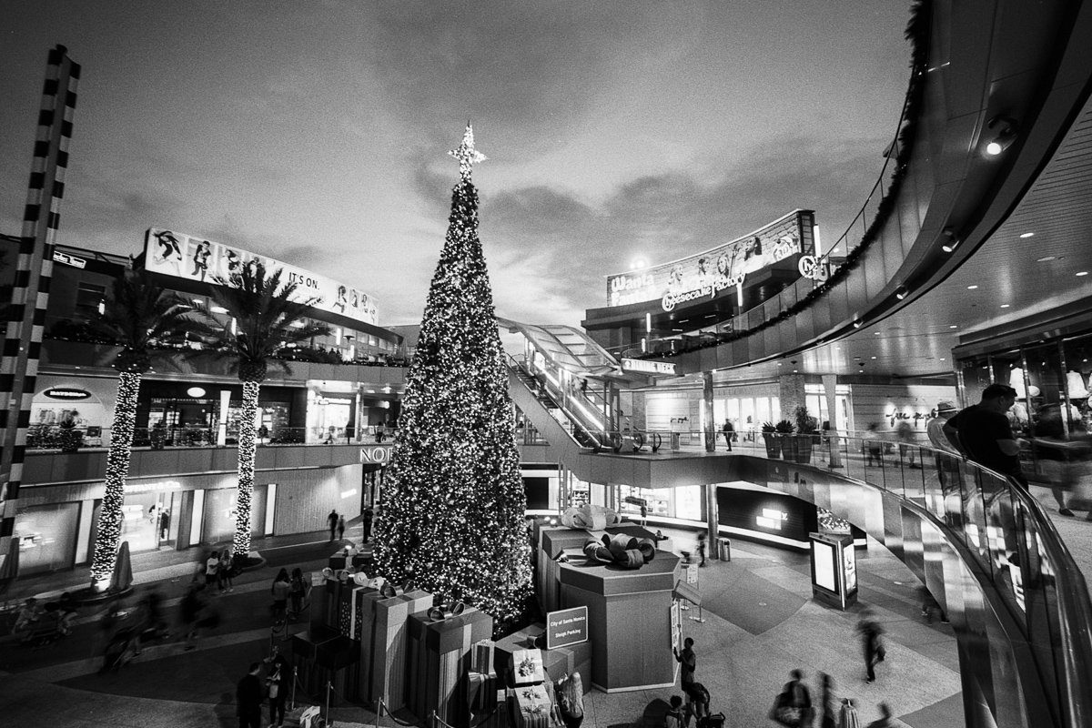 @adiw1202 One of my favorite #festive shots, on #Ilford Delta 100, with #Voigtlander Bessa R2A and #Heliar 15mm super-wide. Developed in Ilfotec DD-X.