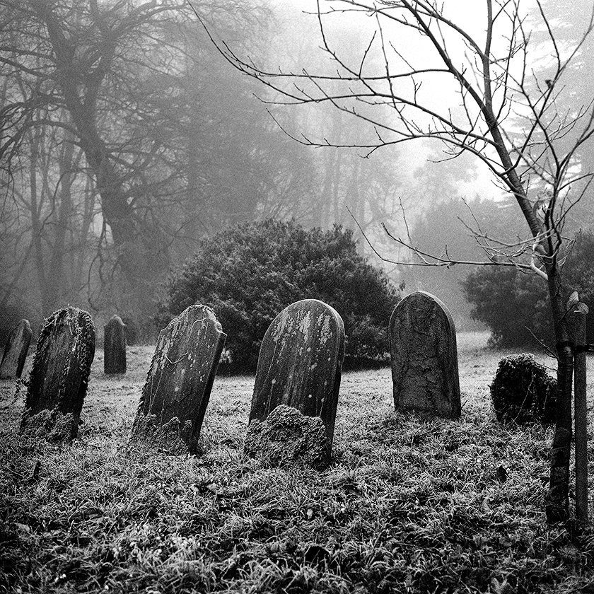 @JohnScarbro1 Feb 12 Hootlet More Old Cemetery 2. @ILFORDPhoto Delta 3200 @1000. 6X6. Minolta Autocord. #ilfordphoto #lovefilm #fridayfavourites #believeinfilm