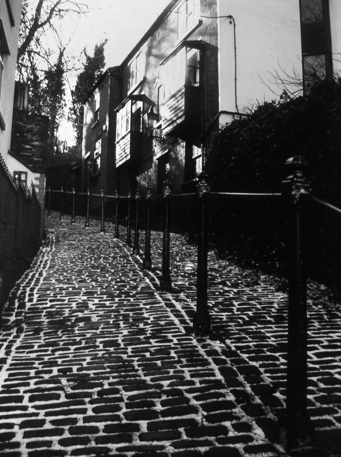 Image shot on ILFORD Photo PANF ISO 50 black and white film then reversal processed