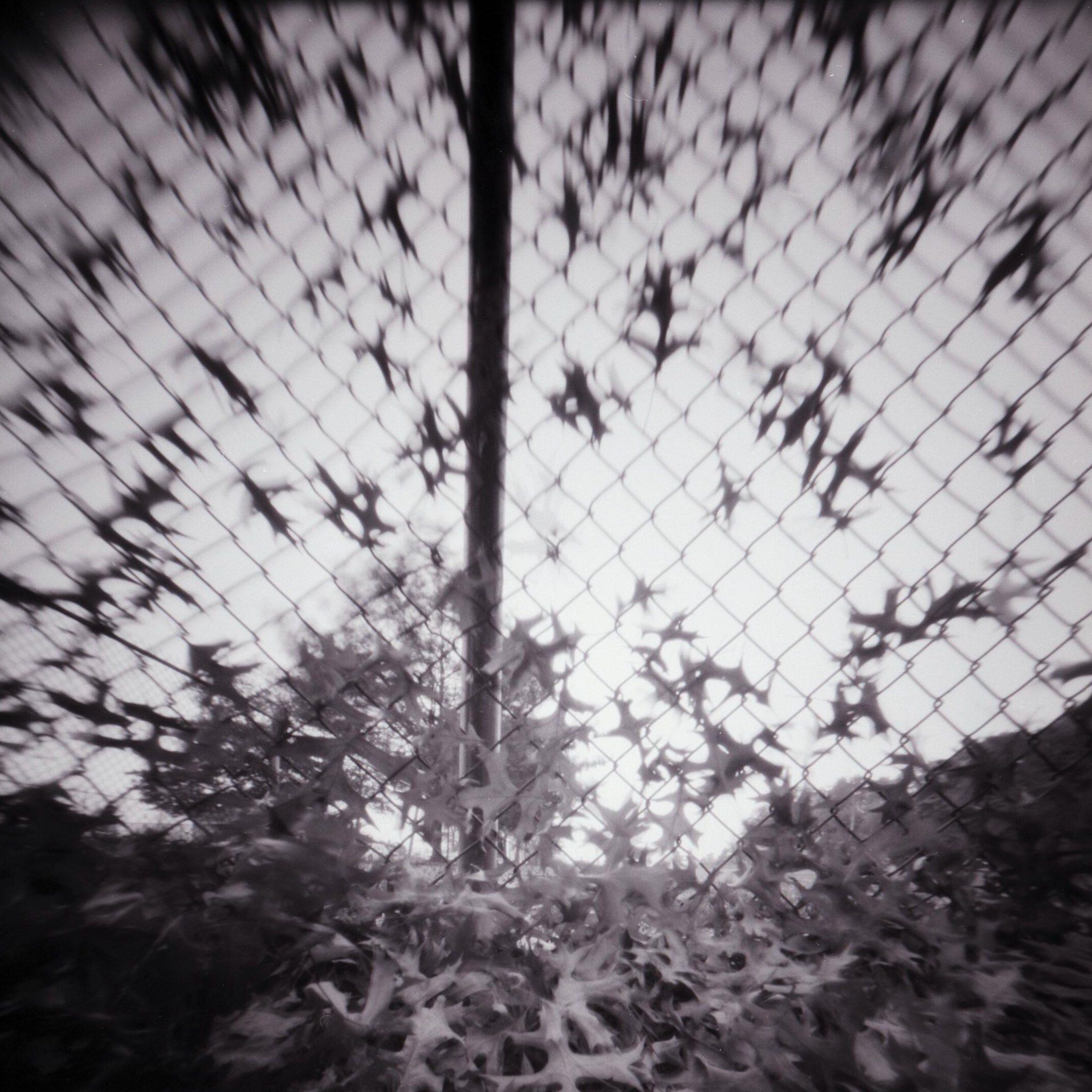 @DrMarsRover · Oct 3 . @ILFORDPhoto Delta 100 RSS 6x6 #pinhole #ilfordphoto #fridayfavourites #patterns