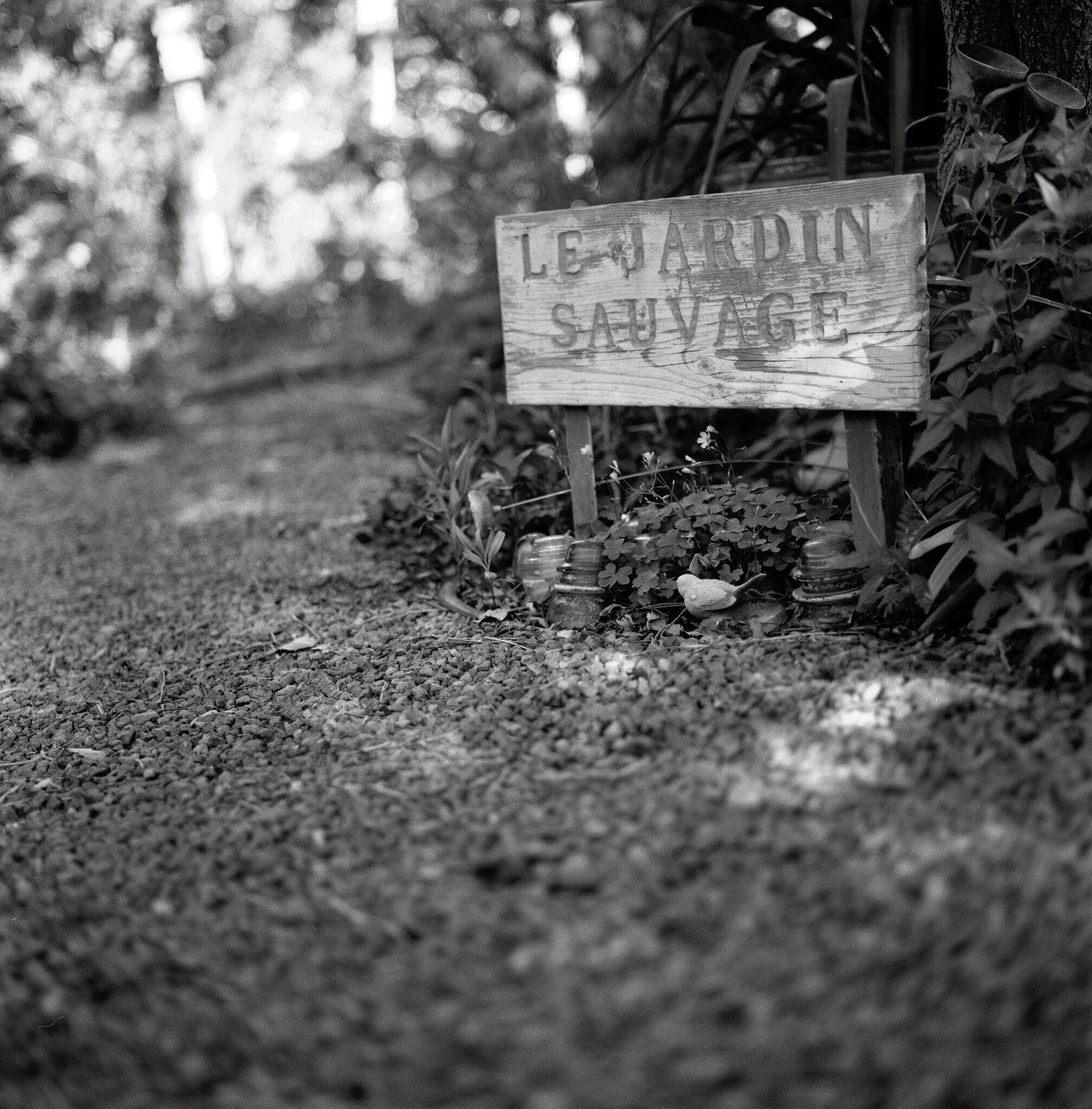 @Magooch3 · Oct 16 Replying to @ILFORDPhoto Pan F+ #depthoffield #fridayfavourites #ilfordphoto
