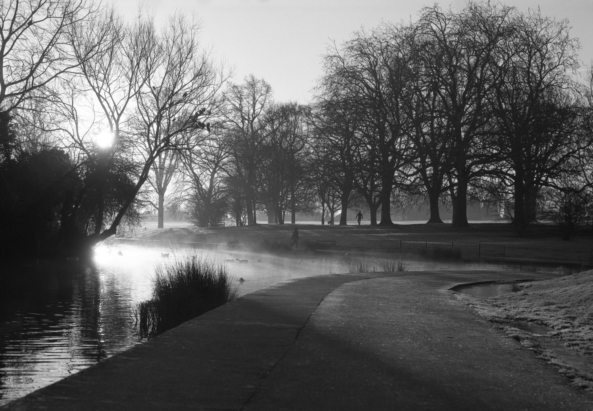 @atlantean526 · 3h Replying to @ILFORDPhoto @SkearsPhoto and 6 others Smoke on the water. A cold, frosty Sunday morning in Abington Park, Northampton. 19.1.2020 @SkearsPhoto 6x7 rangefinder/ 100mm f3.5 Mamiya Press lens. 1/60th sec/ f11 @ILFORDPhoto Ortho 80 plus Dev. ID-11 #ilfordphoto #fridayfavourites #shotin2020