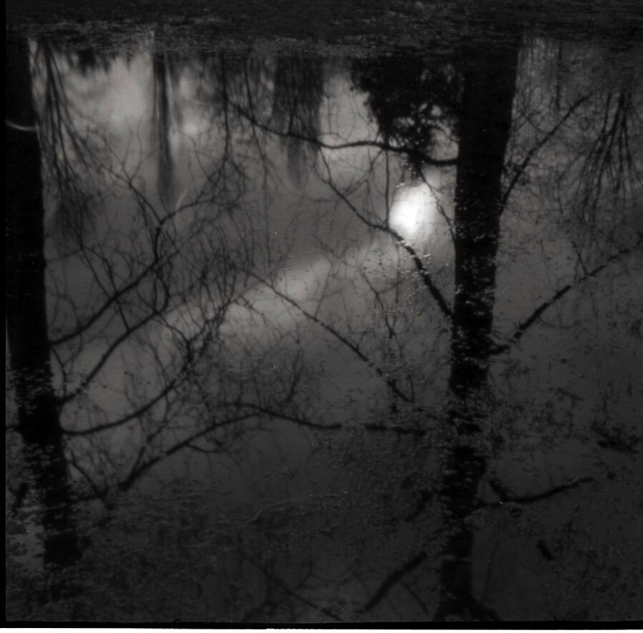 @DrMarsRover #Winter in the Pacific Northwest is dark and wet. @ILFORDPhoto HP5+ #pinhole #fridayfavourites
