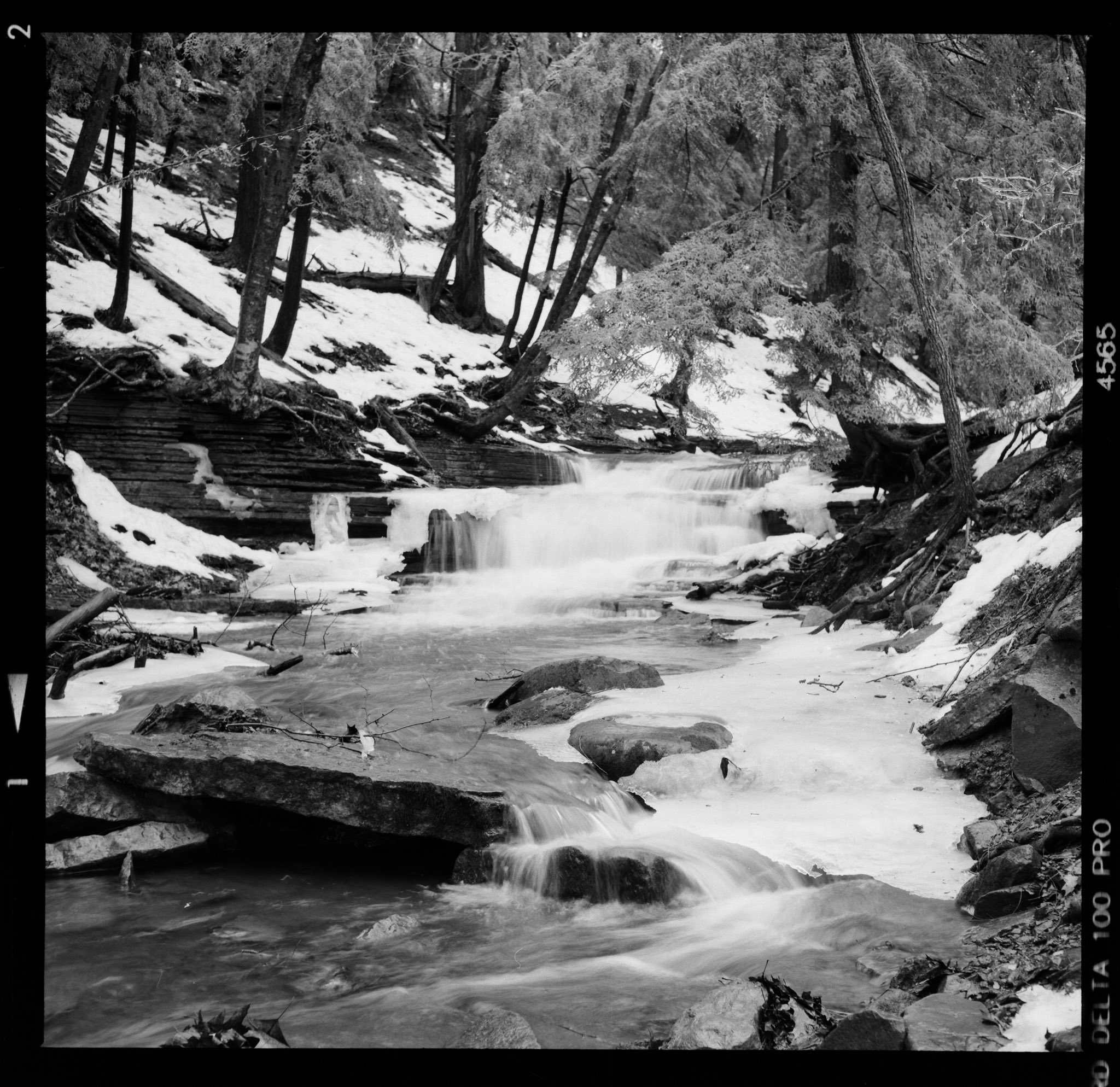 @MattAngleyPhoto · 16h Forest Stream 📷 Zeiss Ikoflex 1C + 75mm f/3.5 Carl Zeiss Tessar 🎞 Ilford Delta 100 #landscapephotography #blackandwhitephotography #ilfordphoto #delta100 #filmphotography #photography #mediumformat #zeiss #6x6 #fridayfavourites