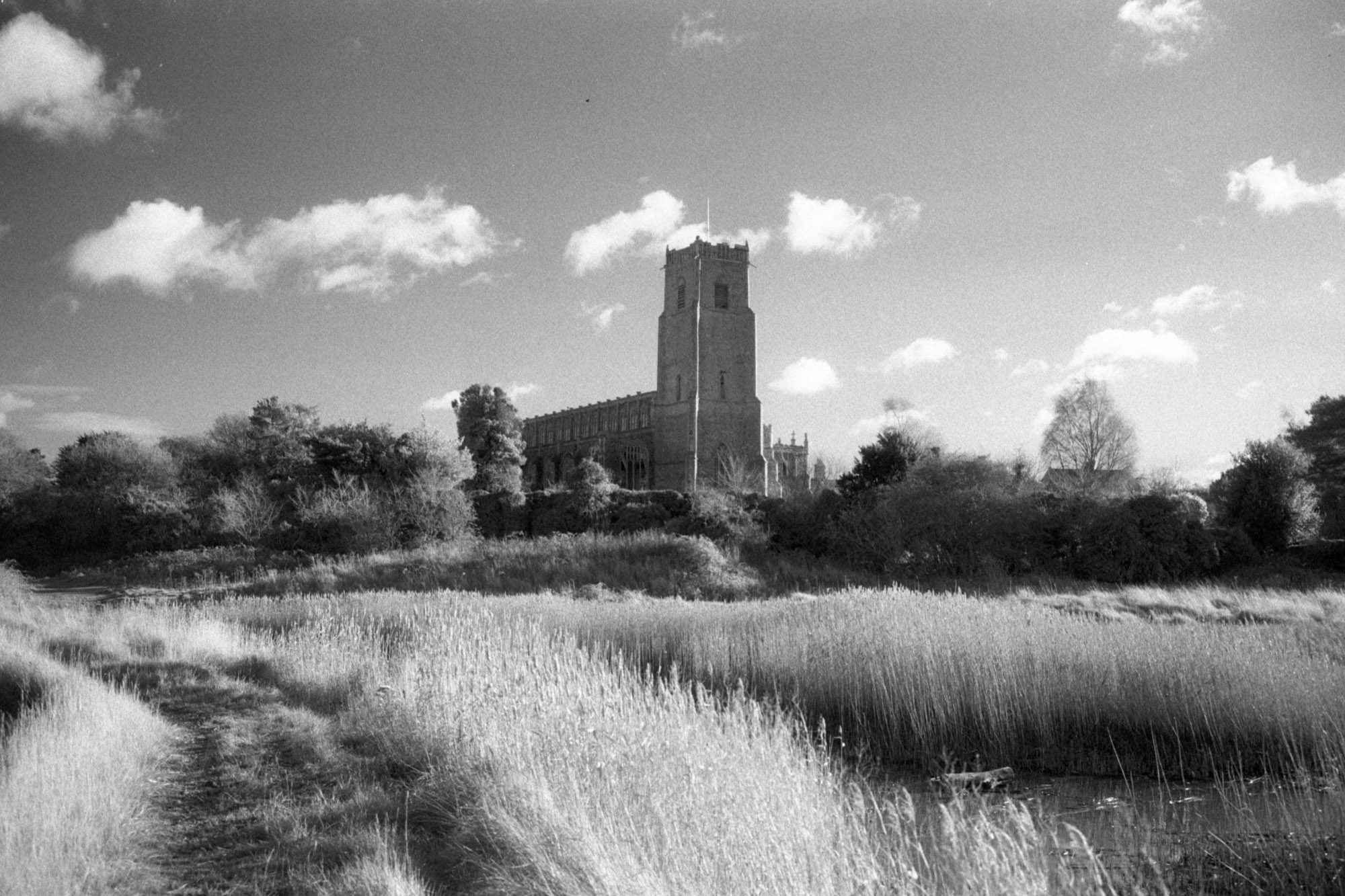 Black and white image on ILFORD film by Jason Avery