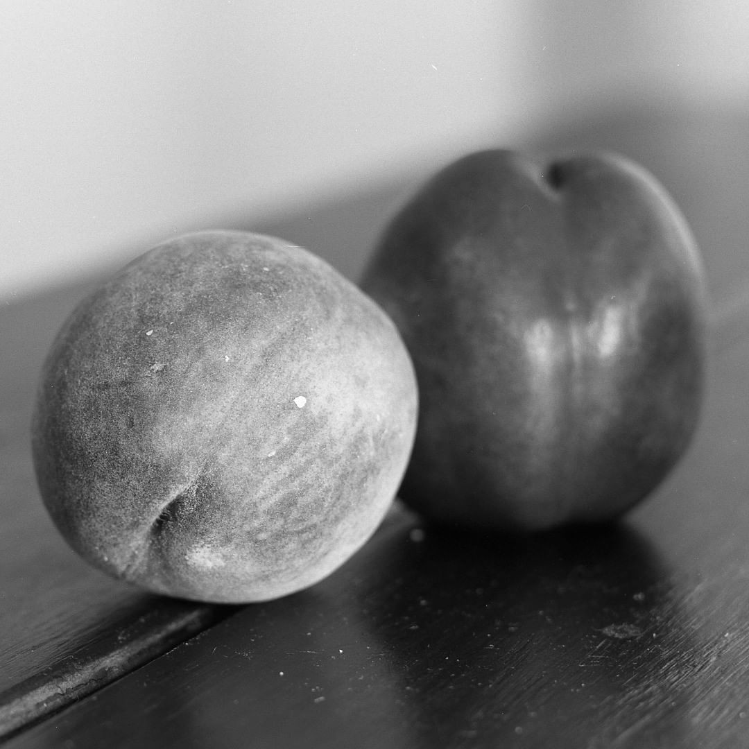 samduncan156 A peach and a nectarine on Ilford Ortho. #ilfordortho #fridayfavourites #specialistfilm #parallaxshootsilfordortho80 #homedevelopedfilm #ilfotecddx #stilllife #mamiyarb67 #mediumformatfilm #bnwfilmphotography