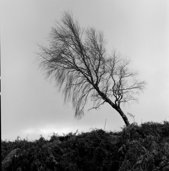 Shot on HP5 ©Ted Smith