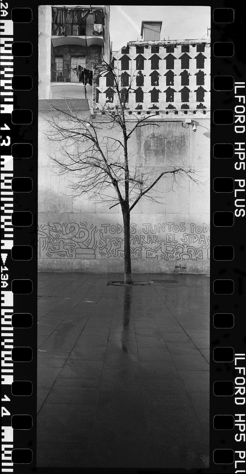 Black and white film Photgraph by ©Rafael Gonzales shot on ILFORD HP5 film