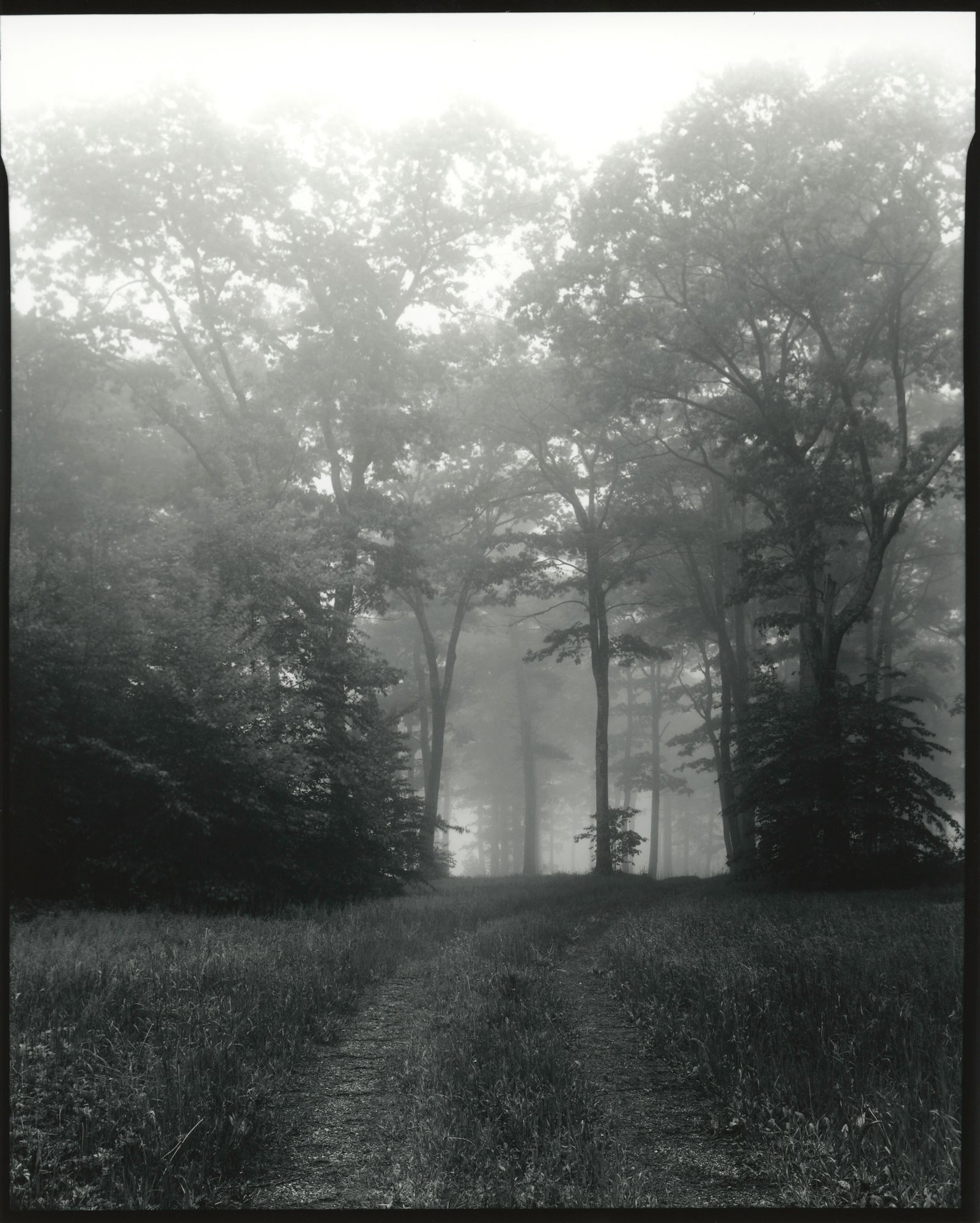 Part1_HarveyMountain_NewYork_8x10_SilverGelatinContactPrint_ILFORD_FP4_on_IlfordFBClassicGloss