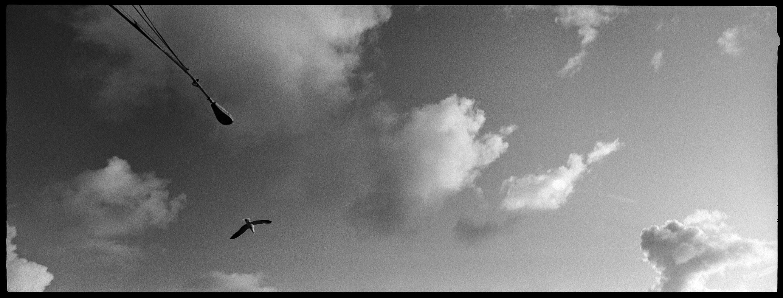 XPAN-089 by Brett Hillyard on ILFORD black and white HP5+ Film