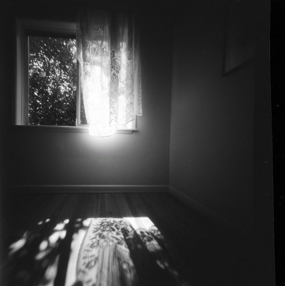 @DrMarsRover · Sep 22 Afternoon sun through my dining room window @ILFORDPhoto Delta 100 RSS 6x6 pinhole #ilfordphoto #fridayfavourites #overlooked