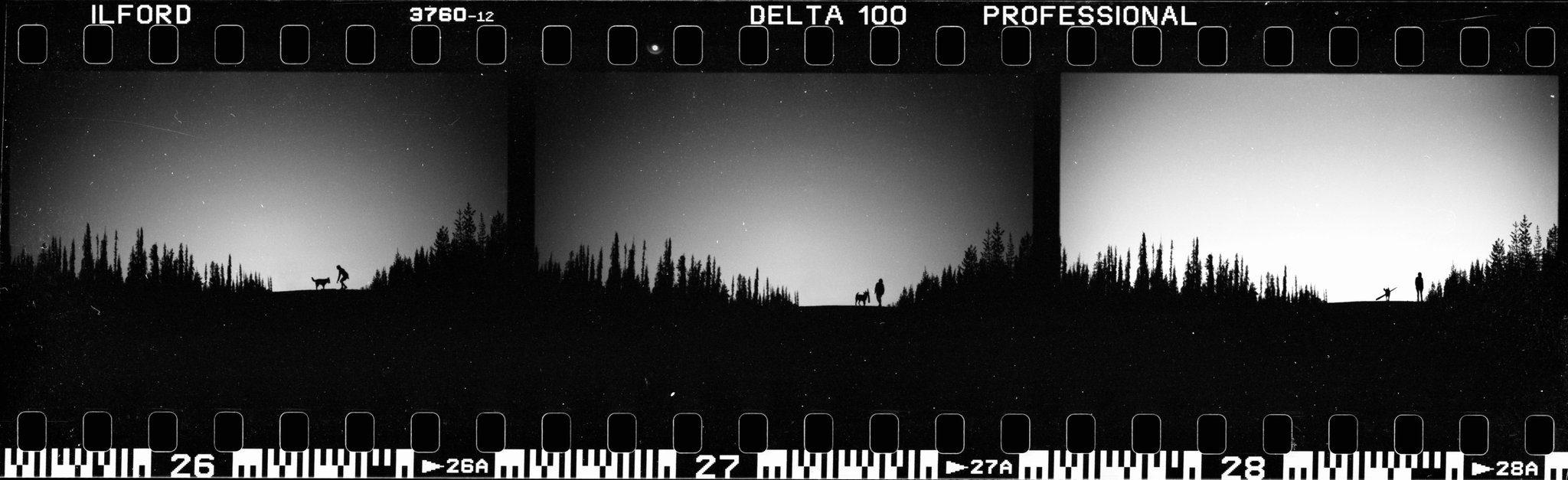 @leder_filmmy all time favorite strip of film Ilford delta pro 100 processed w/ @ILFORDPhoto ddx developer #ddxdev
