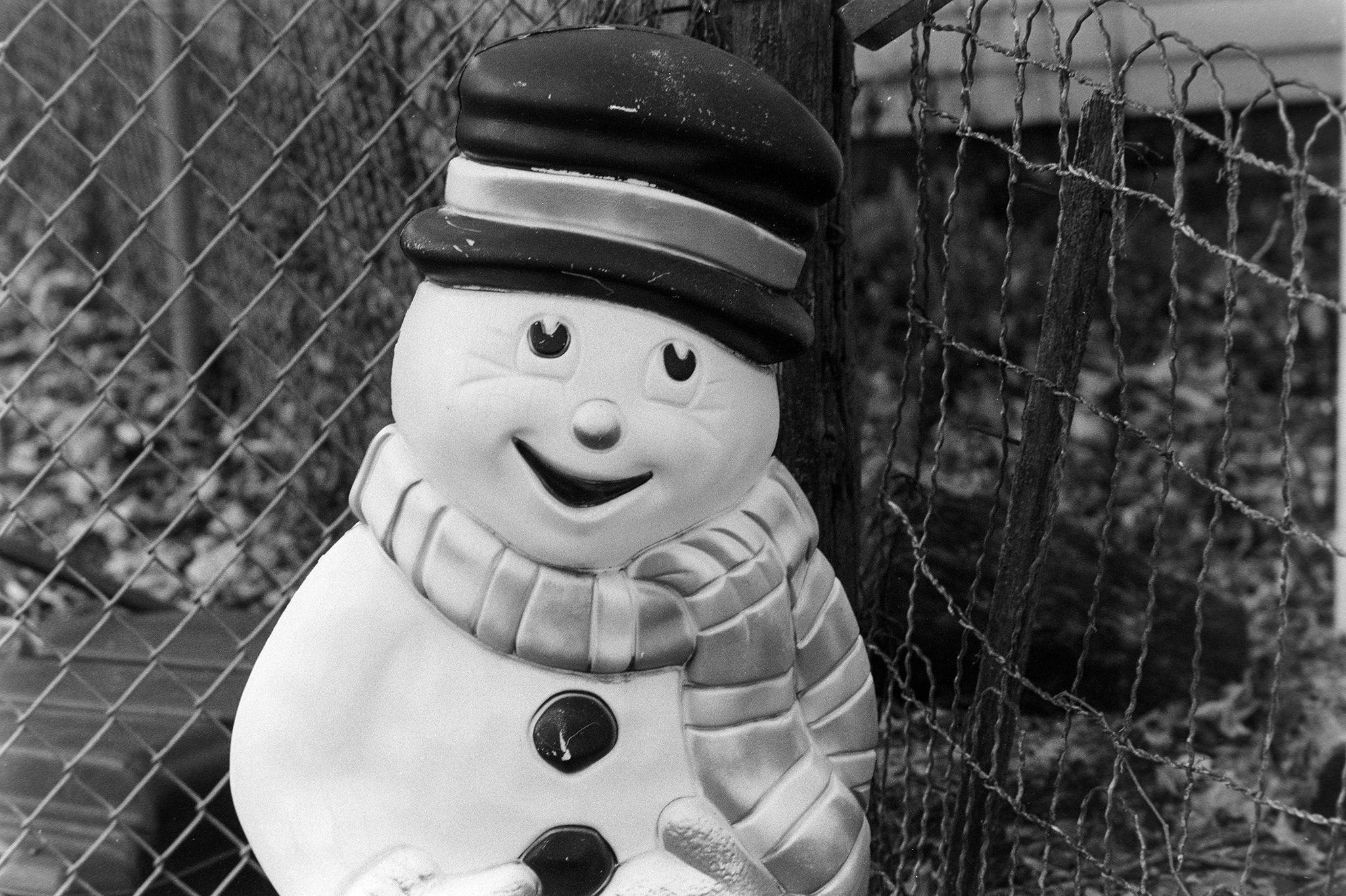 @r_endymion · 20h Replying to @ILFORDPhoto Snowman Nikon F4, Nikkor 85/1.8 AFD, Ilford Pan 50F+ expired 2015 EI 80 Diafine