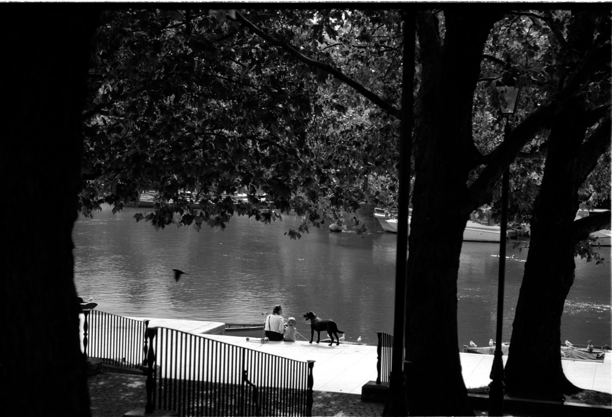 Shot by Simon King on ILFORD Delta 100 black and white film