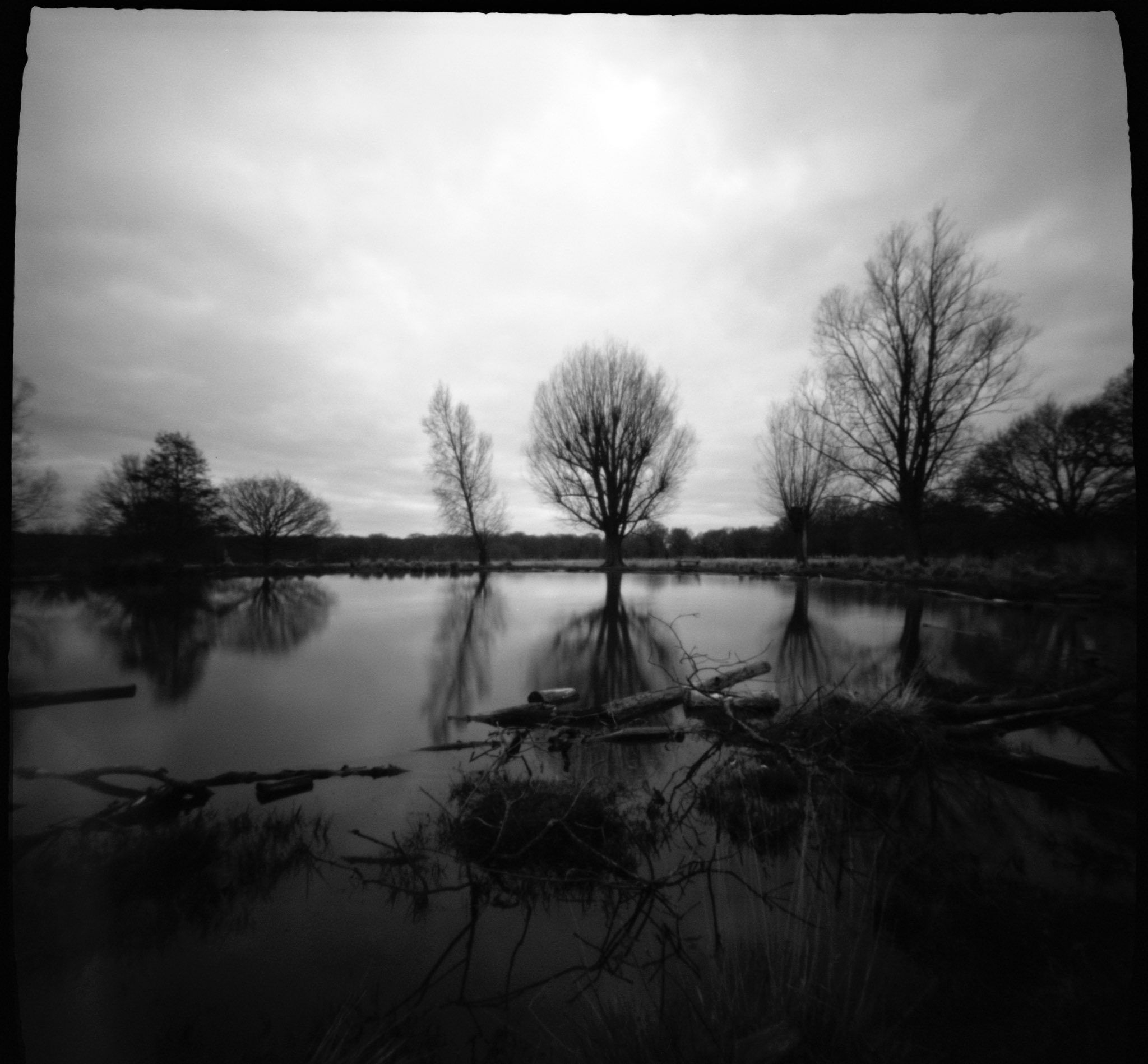 @DhutchPhot · Apr 28 #ffpinhole #fridayfavourites ZeroImage 2000 @ILFORDPhoto #Xp2Super Richmond Park pond.