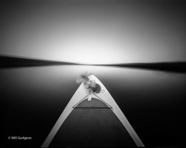 @willgudgeon · Apr 28 Paddle boarding with my dog Zero Image 4x5 IIlford Delta 100 https://youtube.com/watch?v=kC_oqt4SSSI #ilfordphoto #pinhole #fridayfavourites #ffpinhole @ILFORDPhoto