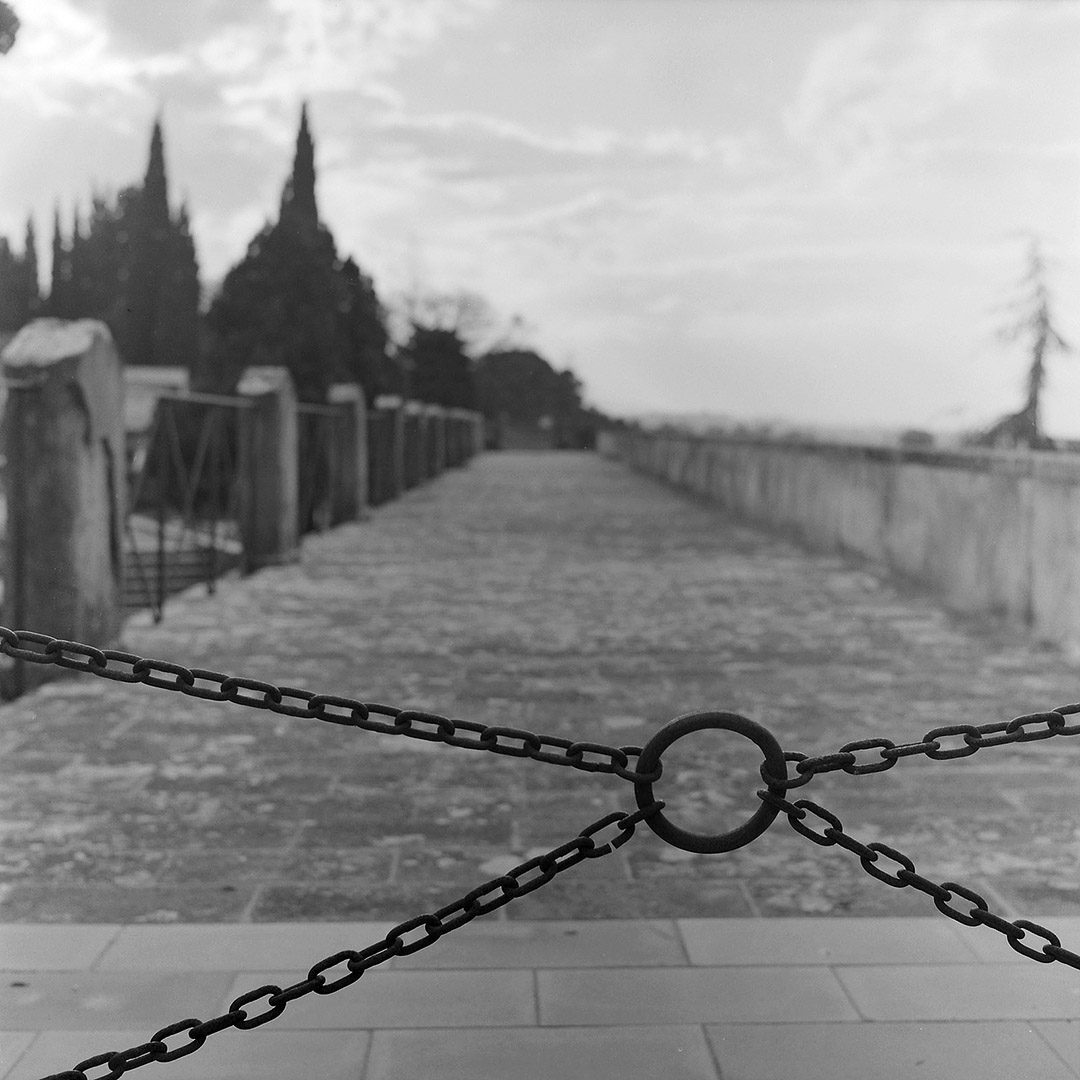 """@emmef2 Replying to @ILFORDPhoto San Miniato Rolleiflex T (the Tessar bokeh is often a bit """"nervous"""" but I think it works well with this image) #hp5+ #ilfordphoto #fridayfavourites #filmbokeh"""