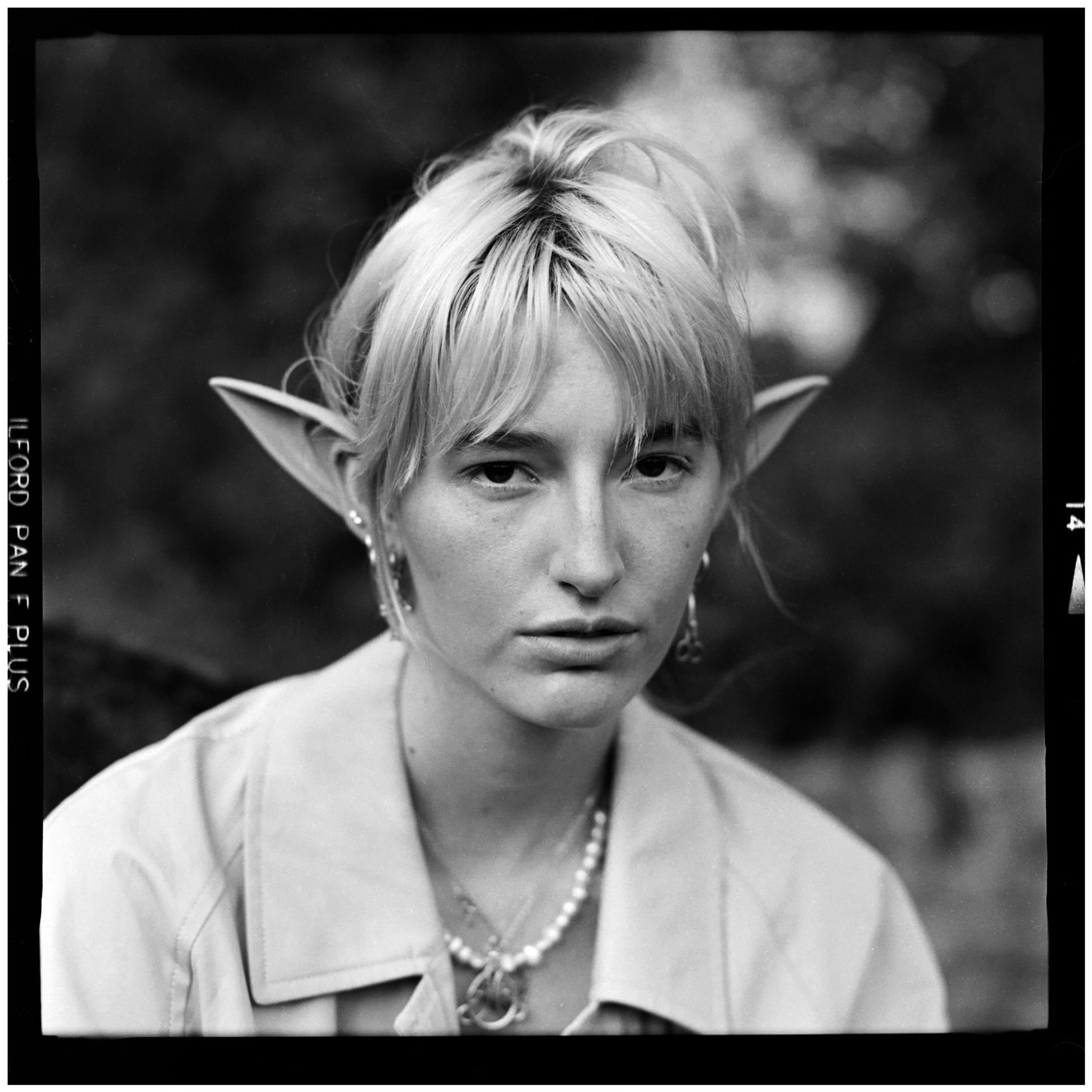 """@CMFleming70 · 41m Replying to @ILFORDPhoto This is an """"elfie""""... . . . Hahahahahahahahahahahahahahahahahahaahahahahah ahhh elfie...."""