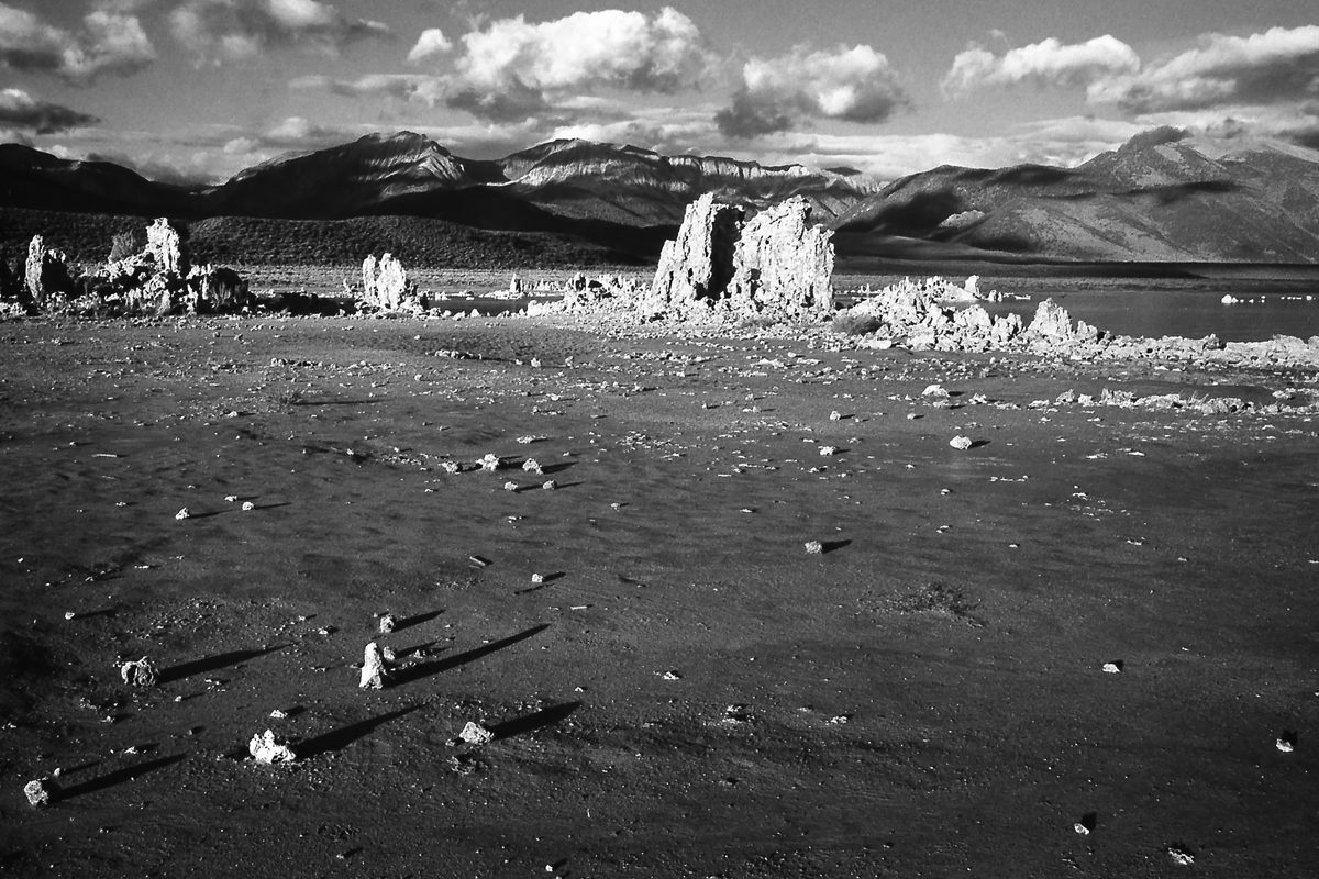 @Treed1961 From a few years back. FP4+ in a Canon A1 with 28mm. @ILFORDPhoto #fridayfavourites #alienfilm