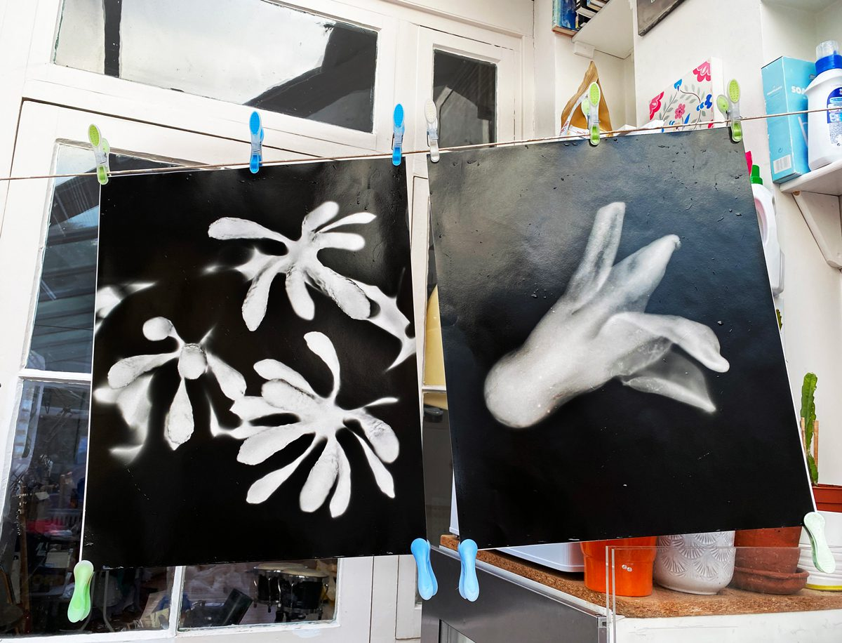 """Cameraless Photos Drying (Ilford Warm Tone Gloss Fibre 16x24"""") Becoming the Camera - Thoughts on Photograms"""