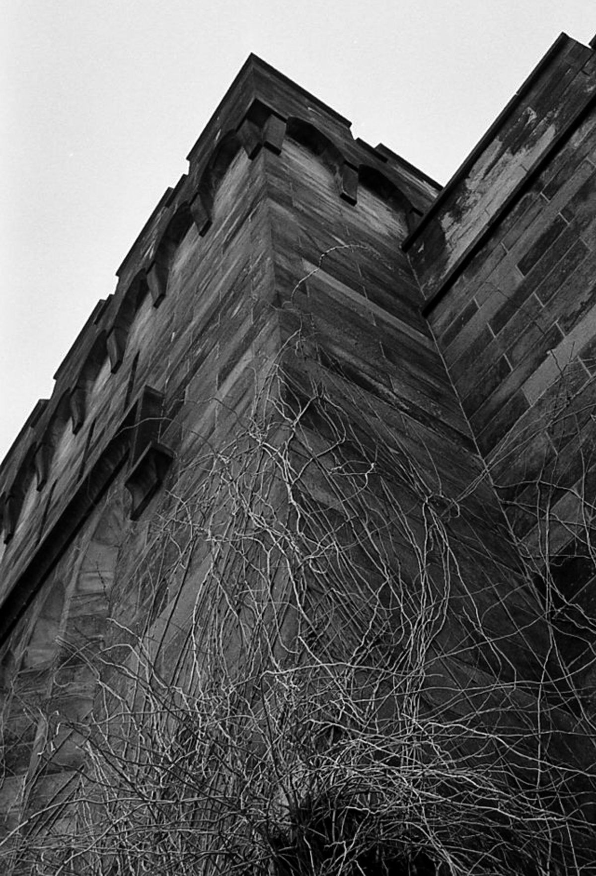 Eastern State Penitentiary's Gothic castle style architecture instills feelings of awe, power, and fear. I was limited by the lens I brought and couldn't capture the whole facade so I choose to focus on eery vines creeping up the stone walls.